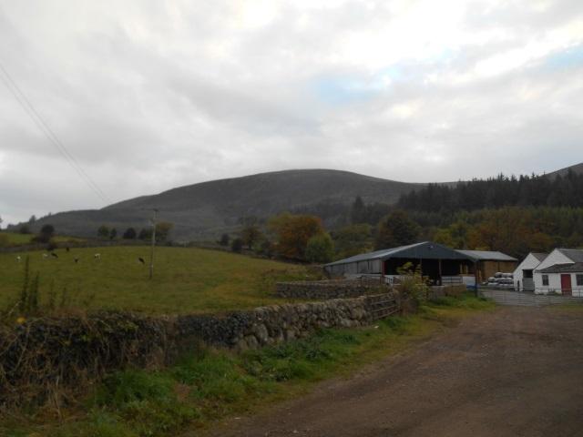 Criffel from Ardwall Farm