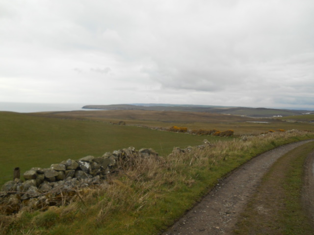 Farm track from Castle Clanyard to Port Logan