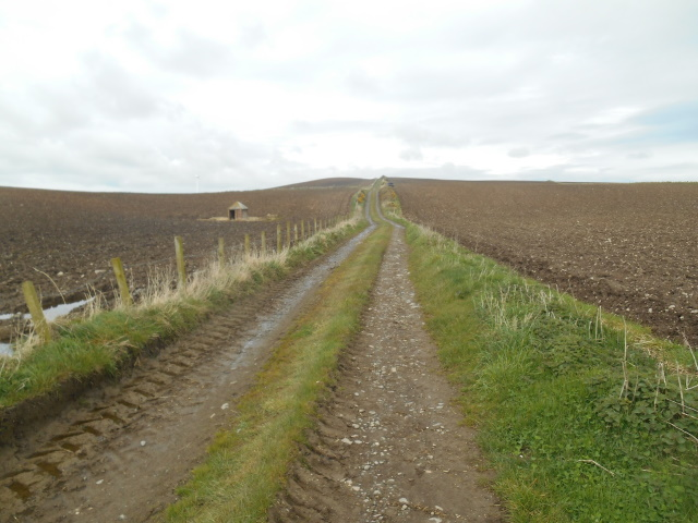 Track between Cardrain and Pulinkum farms. The fields are bare and stony.