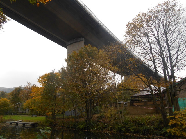 Erskine Bridge from underneath