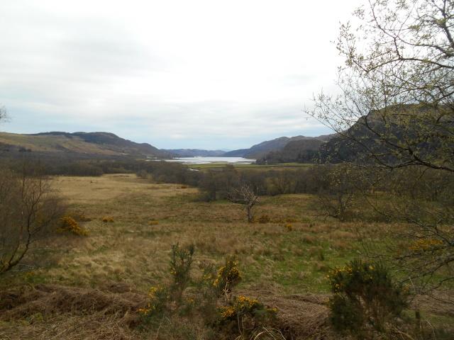 Loch Ruel distant
