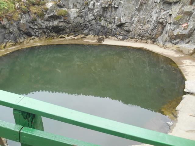 Logan fish pond