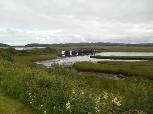 Islandadd Bridge