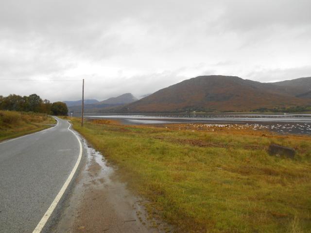 Loch Eil with seagulls on it