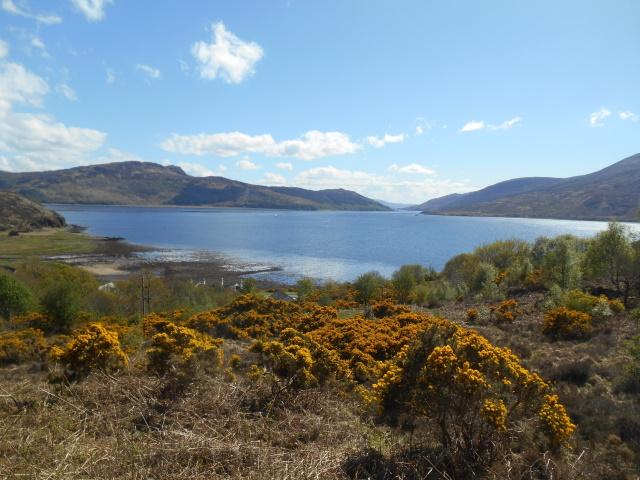 Loch Alsh from near Reraig
