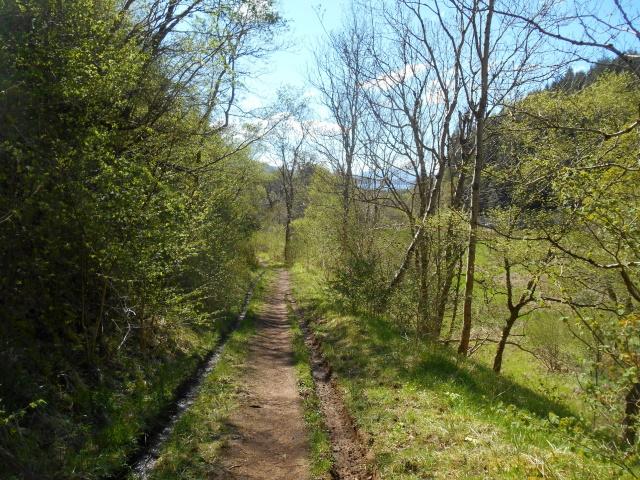 Footpath from Kirkton