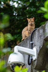 Turvakamera eli valvontakamera on helppo kytkeä mobiililaajakaistan avulla