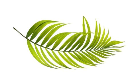 Vihreä sähkö on ympäristöystävällistä.