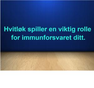 Hvitløk spiller en viktig rolle for immunforsvaret ditt.