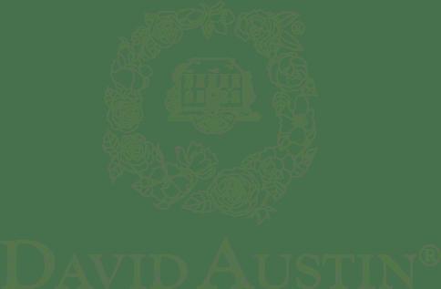 David Austin logo