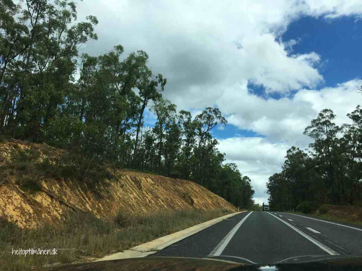 Roadtrip Queensland