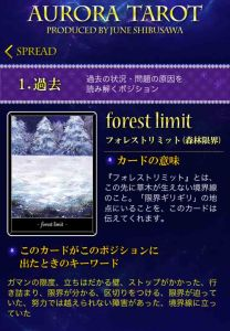 37 森林限界 キャプチャ