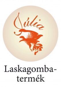 logo Horvath Julia