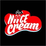 "Niice Cream: "" we make it… your way"""