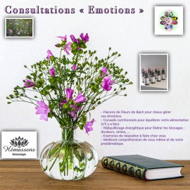 Consultations Fleurs de Bach Hémassens Fameck