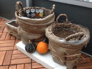 Vinterförvaring växter