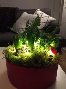 julgrupp med ljusslinga