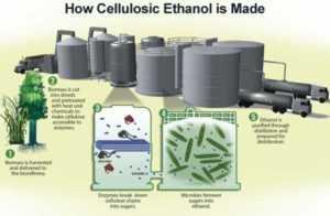 Hemp ethanol