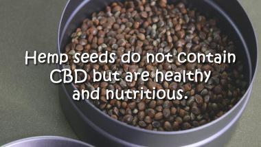 hemp seeds do not contain cbd