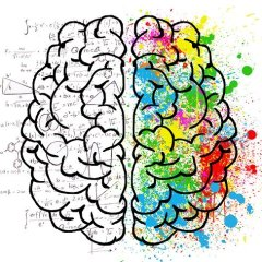 colorful brain graphic