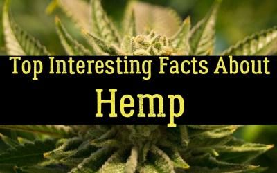 Hemp: Just the Facts
