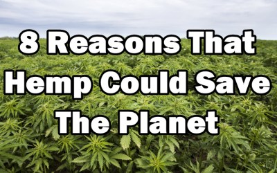 8 Reasons Why Hemp Can Save The Planet