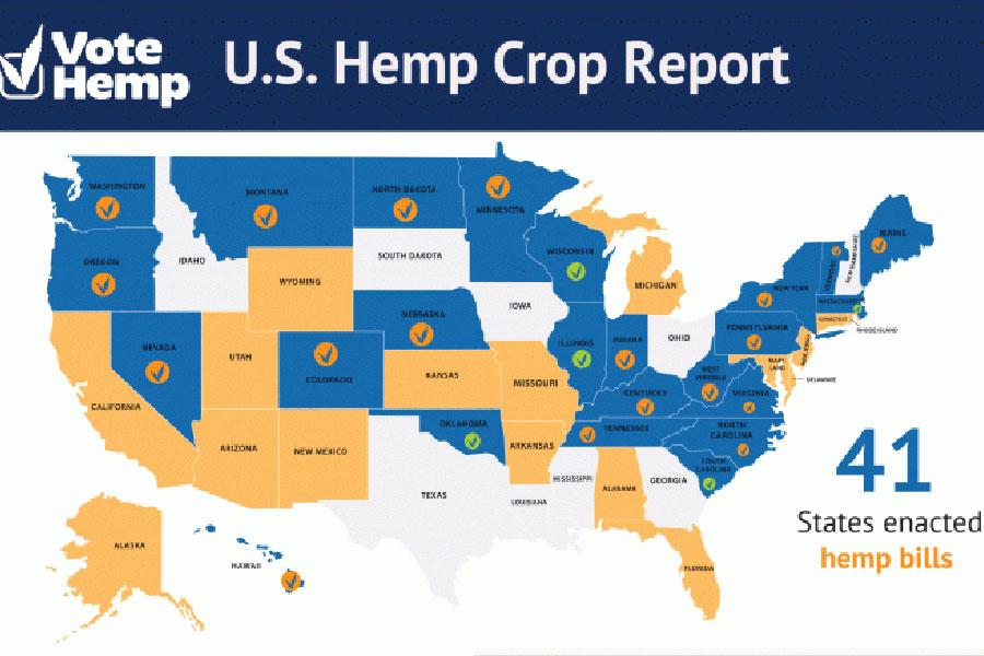 U.S. Jumps to No. 3 Among Top Hemp Growing Nations