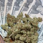 Marijuana Banking Bill Approved By Congressional Committee