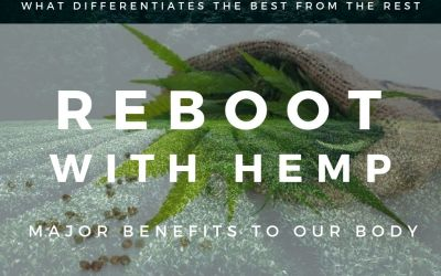 Hemp the Superfood