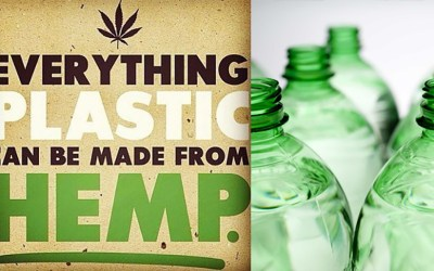 Hemp: The Natural Response to Plastic Pollution