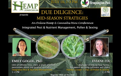 Hemp Symposium Due Diligence Series