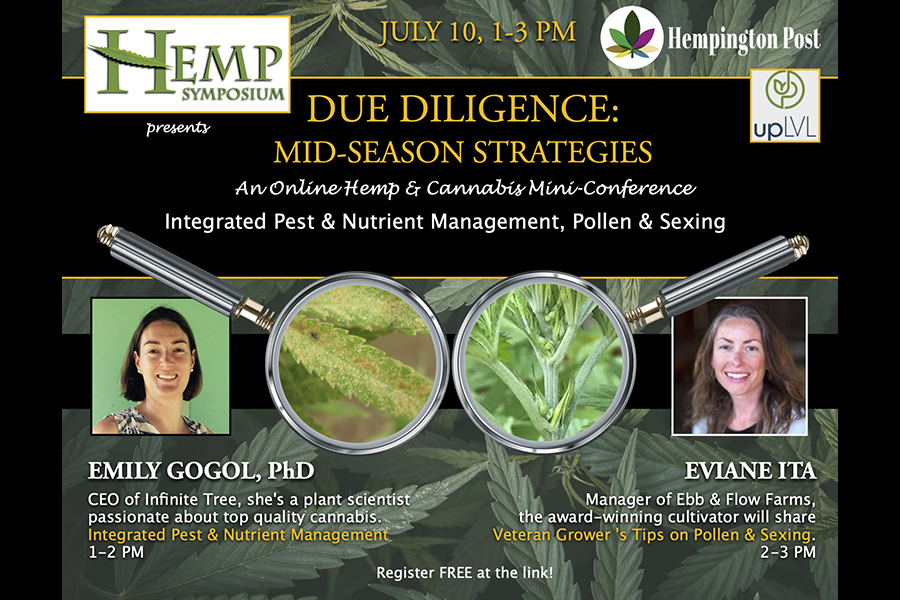 Hemp Symposium Due Diligence Series