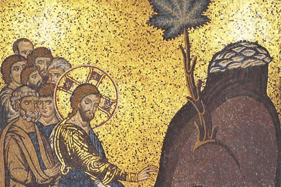 Where Does the Word 'Cannabis' Come From?