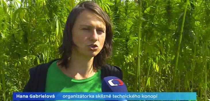 Hemp harvest at Bio-Sasov farm