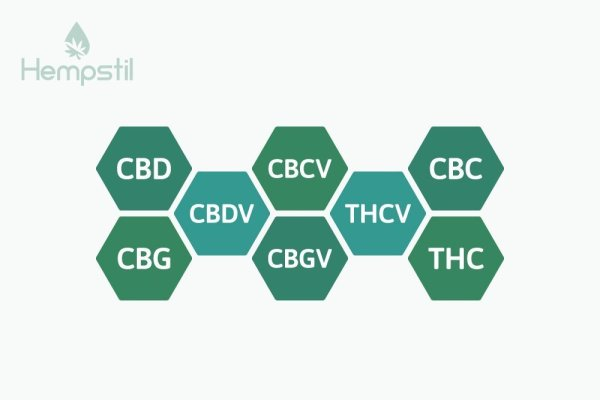 Cannabinoids in CBD Oil