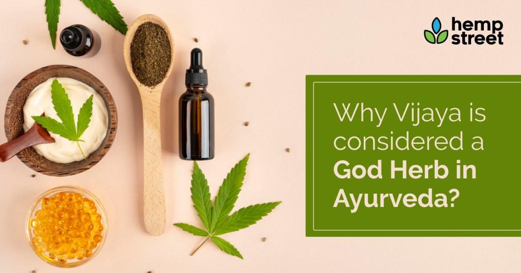 Vijaya - God Herb in Ayurveda