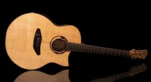 A guitar made from hempwood