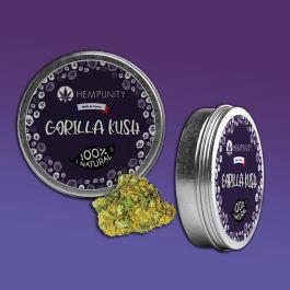 Fleurs CBD Gorilla Kush | 7% de CBD | Moins de 0,2% THC | Hempunity