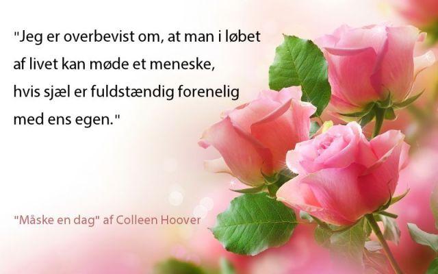 """""""Måske en dag"""" af Colleen Hoover - boganmeldelse - Bogfinkens bogblog"""