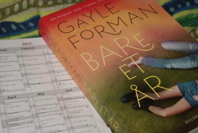 """""""Bare et år"""" af Gayle Forman - Just One Day #2 - Bogfinken bogblog"""