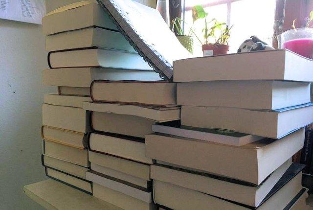 TBR #1 - Bogfinkens bogblog