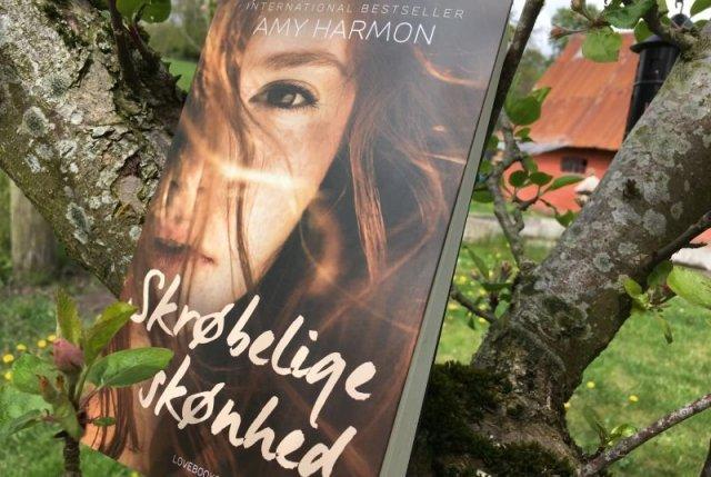 """""""Skrøbelige skønhed"""" af Amy Harmon - Bogfinkens bogblog"""