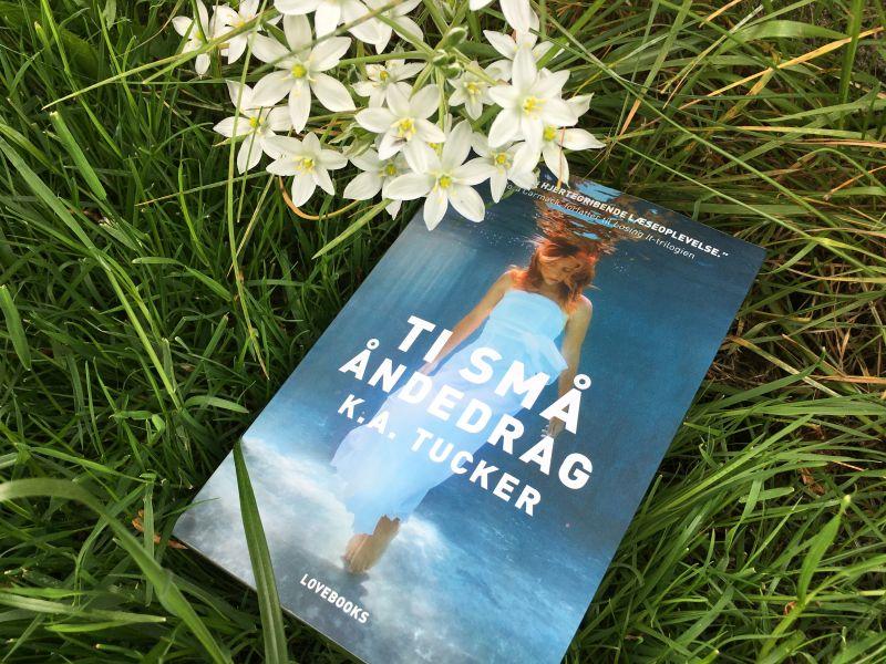 """""""Ti små åndedrag"""" af K. A. Tucker - boganmeldelse - Bogfinkens bogblog"""