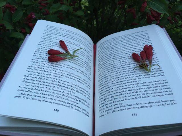 Mansfield Park af Jane Austen - Bogfinkens bogblog