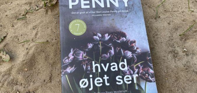 Hvad øjet ser af Louise Penny - Bogfinkens bogblog