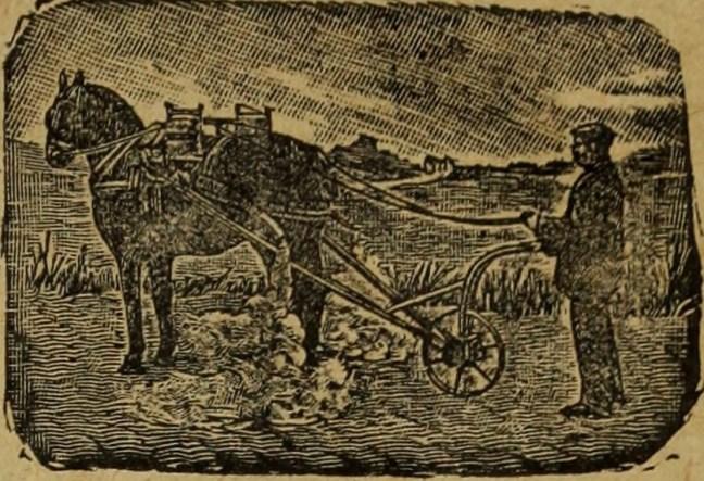 Eine alte Darstellung des Pflügens (Quelle: Internet Archive): So wie der Bauer das Land bestellt, bereitet Google mit Chrome den Acker für zukünftige Webtechnologien.