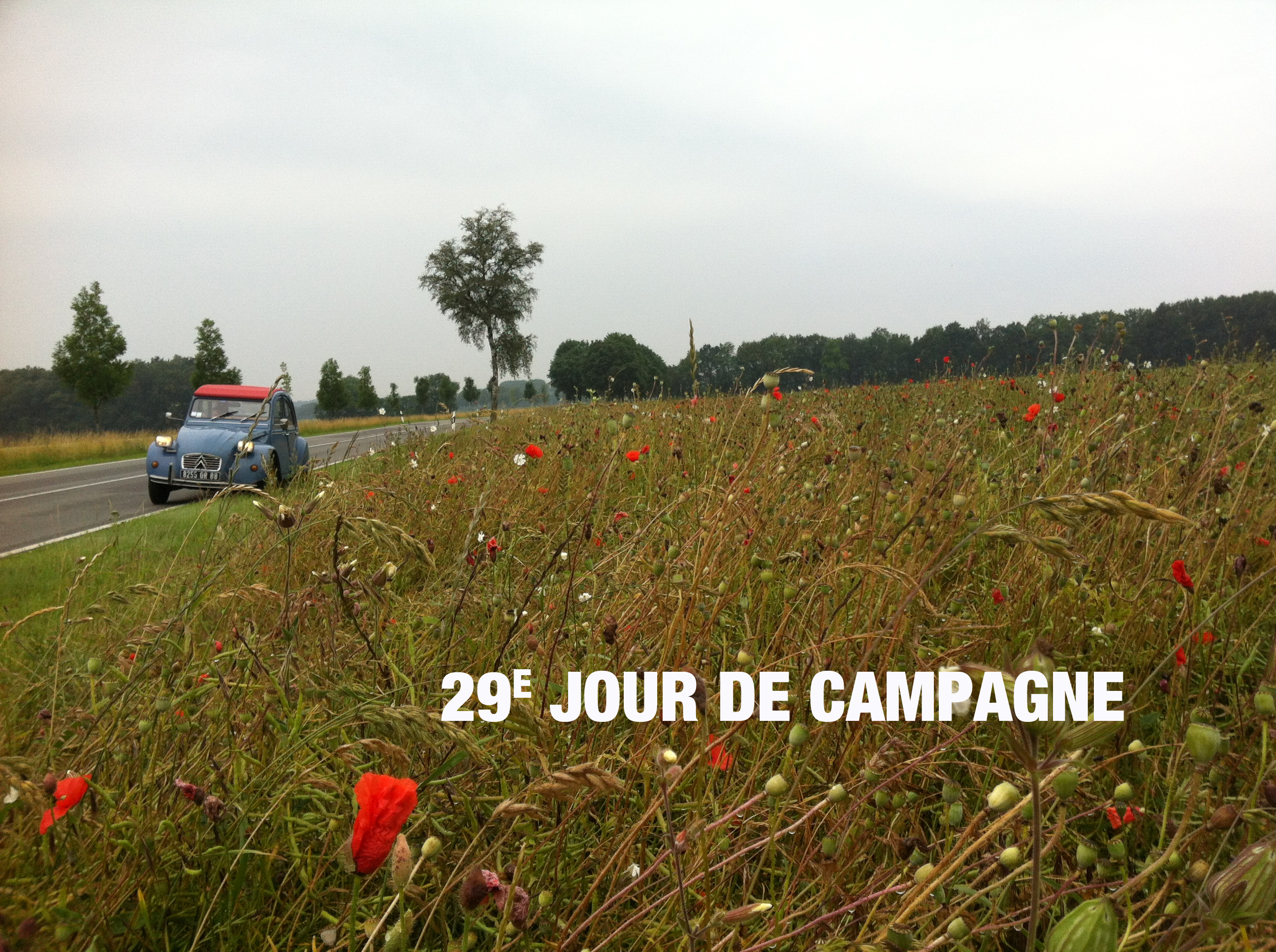 Campagne29-Mecklembourg-Poméranie-Occidentale