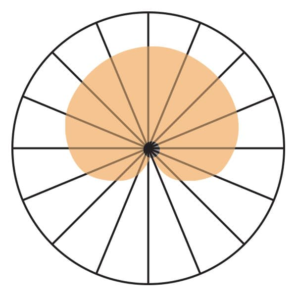 Cardioid Polar Pickup Pattern