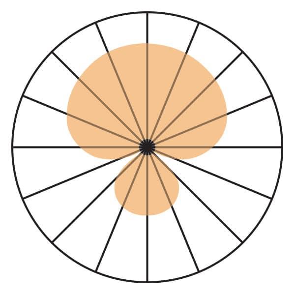 SuperCardioid Polar Pickup Pattern