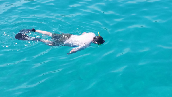 Bob in the clear bay water